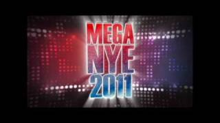 Mega New Years Party 2011