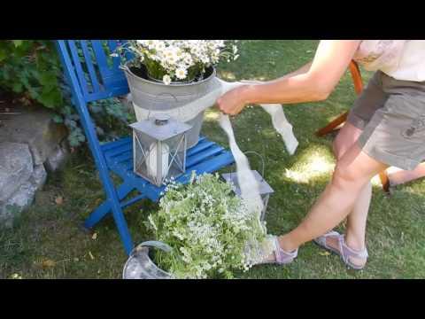 Sommerdeko,  Gartendeko  Stuhl dekorieren! Gartenideen