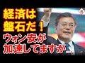 文大統領「韓国経済の信頼度は高い!フェイクニュースに騙されるな!」為替市場、ジェットコースターですが??