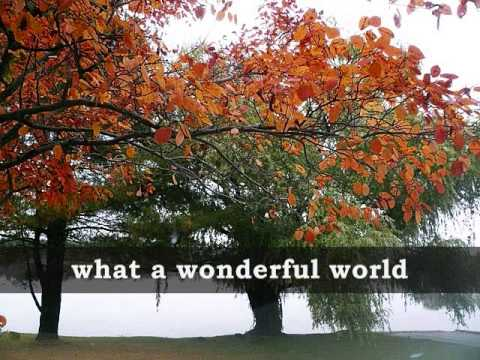 When Serendipity Happens   - Synopsis - Wattpad