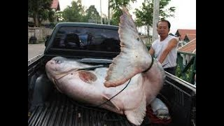 Рыбалка на озере казыкина