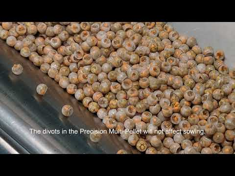 Precision Multi-Pellet Seed - Grower Recommendations thumbnail
