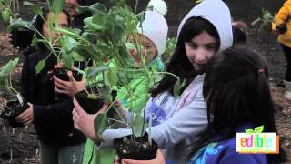 Join the Edible Schoolyard Project