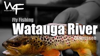 "W4F - Fly Fishing Tennessee ""Watauga River"""