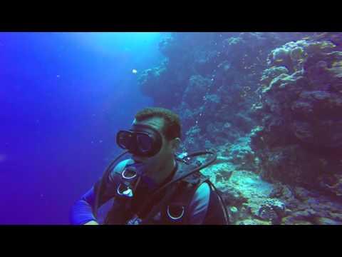 Plongée sous-marine en Égypte