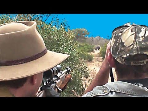 Fieldsports Britain – From rabbits to Cape buffalo