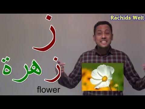 تعليم الحروف الهجائية العربية للأطفال كاملة -نطق 28 حرف بدون موسيقى.Arabic Alphabet for children