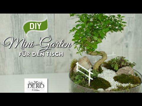 Miniaturgarten als Frühlingsdeko - Schicker Tischschmuck der grünen Art
