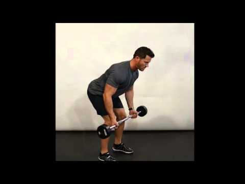 Reverse Grip Row (EZ Curl Bar) - Bent Over