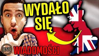 Anglia WYRZUCA imigrantów z kraju! Chcą POZBYĆ SIĘ Polaków | WIADOMOŚCI