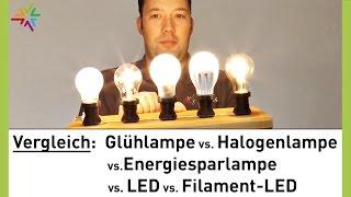 Glühlampe, Halogenlampe, Energiesparlampe, LED & Filament-LED im Vergleich [watt24-Video Nr. 128]