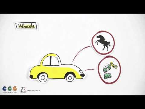 Le message sur la biologie sur les champignons les parasites 5 classe