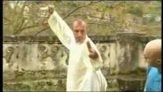 TAIJI QUAN Le taiji à l'épée du style Yang