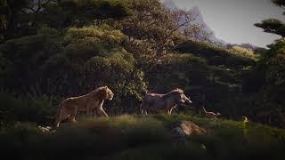 Billy Eichner, Seth Rogen, JD McCrary & Donald Glover - Hakuna Matata HQ (The Lion King)
