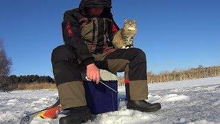 Этот рыбак обловил всех! Первый лед!