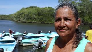 Territorio Marino de vida Chomes, la diversidad cultural y biológica van de la mano Sub en ingles.