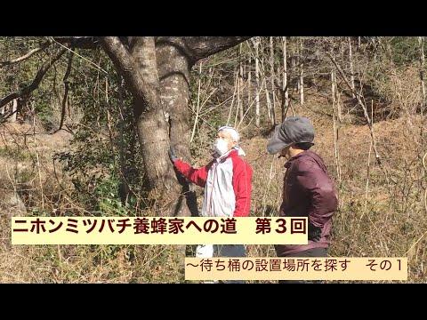 , title : 'ニホンミツバチ養蜂家への道 第3回~待ち桶の設置場所を探す その1