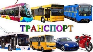 Городской транспорт и Железная дорога развивающее видео. Игрушки поезда для детей и вагон Метро