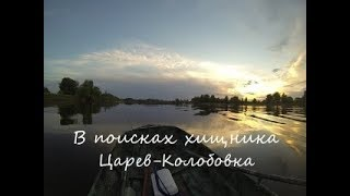 Волгоградская область рыбалка в цареве волгоградской