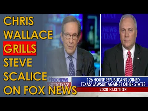 Chris Wallace HAMMERS Steve Scalice for Helping Trump disenfranchise MILLIONS of Americans