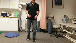 Lunge Series Exercise
