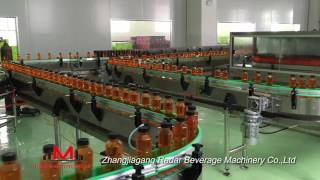 Automatic Bottle Conveyor System For Drink Filling Production Line