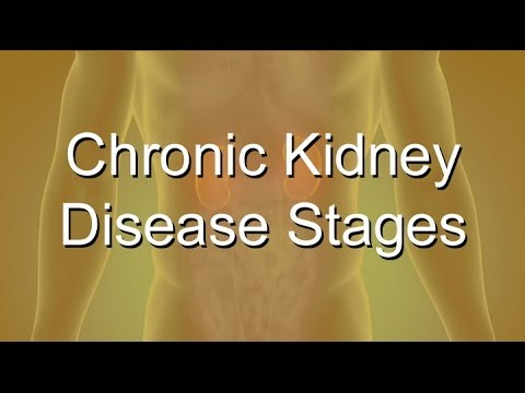 Video Chronic Kidney Disease Stages