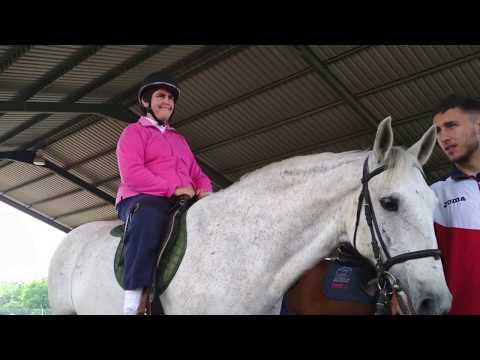 prostata di cavallo