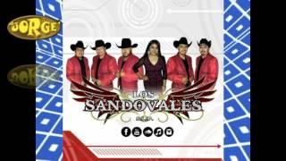 POLKA - EL RATON VAQUERO - LOS SANDOVALES DE SAN LUIS POTOSI