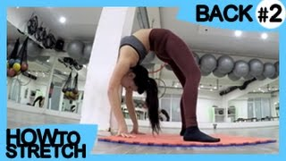 HOW TO STRETCH Your BACK #2 | For Gymnastics & Contortion | Exercises For Flexibility