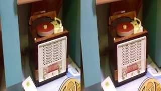 Toshiba Z100 3d video small size recorder player + radio