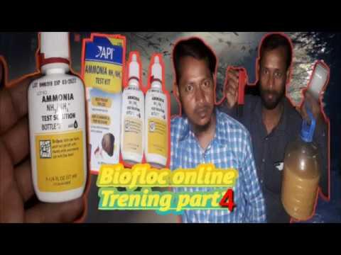 Biofloc Training In West Bengal
