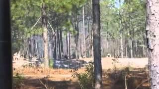 Battle of forks road reenactment 4 - Video Youtube