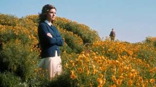 Michel Legrand - Summer Of '42 Theme