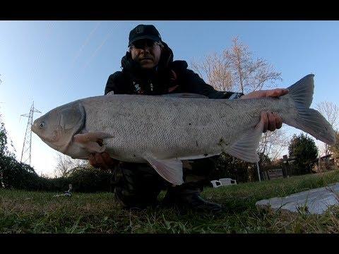 Putevod per pesca