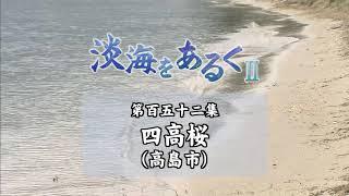 淡海をあるく 四高桜 高島市
