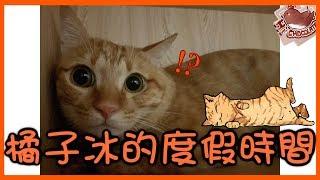 【巧克力】『橘子冰的日常』- 橘子冰的度假時間 ฅ•ω•ฅ