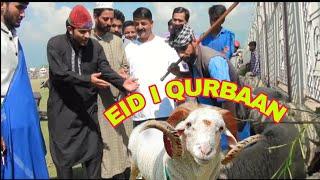 Eid-e-qurbaan kashmiri_kalkharaabs_drama_kck