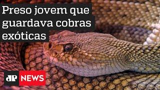 Polícia prende estudante de veterinária suspeito de criar cobras e lagartos e apreende animais em SP