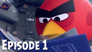 Angry Birds Zero Gravity | Ep. 1 – Stamp Collector