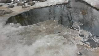 Jan 23 Ice