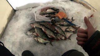 Рыбалка зимняя белоярское водохранилище