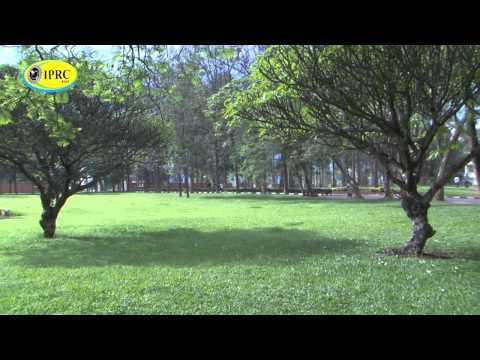 IPRC KIGALI GREEN  ENVIRONMENT