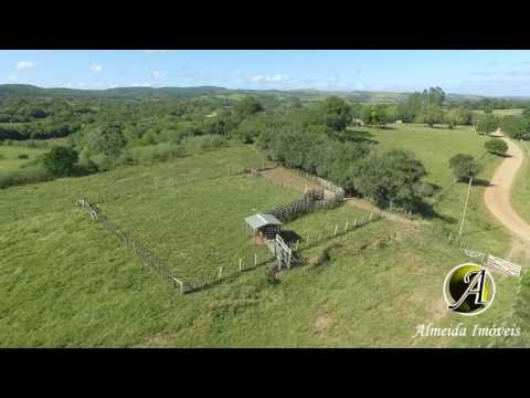 Campo a venda com 250 hectares município de Santana da Boa Vista
