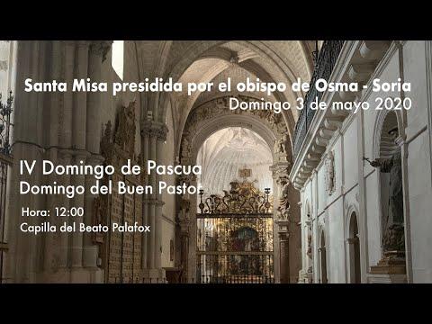 Misa del IV Domingo de Pascua.