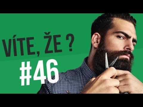 #46 ● VÍTE, ŽE...?