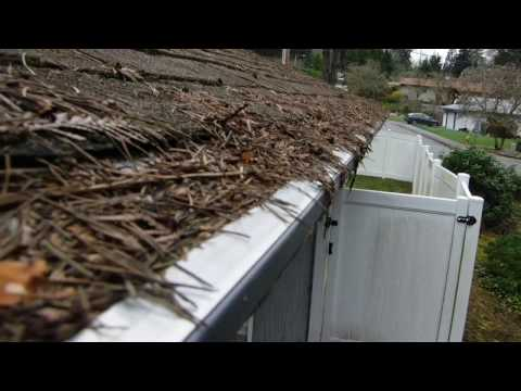 Leafless In Seattle Gutter Guards Easyon Gutter Guard