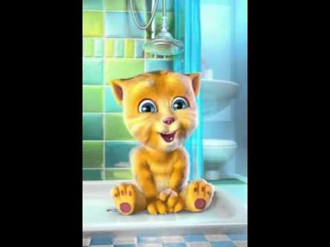 Gatito miki mau