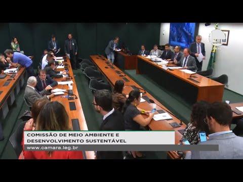 MEIO AMBIENTE E DES.  SUSTENTÁVEL - Reunião Deliberativa - 12/11/2019 - 10:59