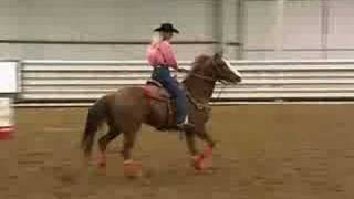Sherry Cervi Training Chappi - Vid 1 Of 4